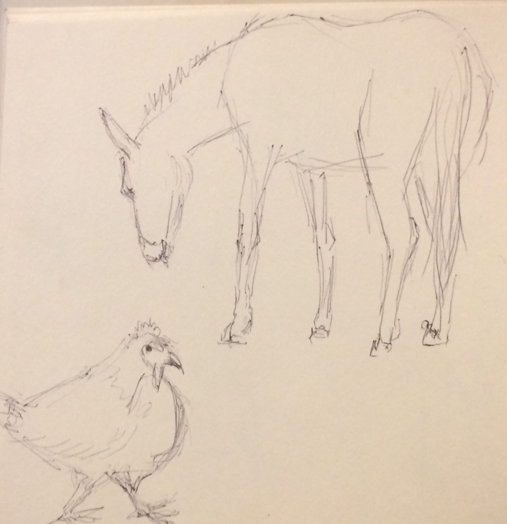 Rough sketch of a donkey and a chicken