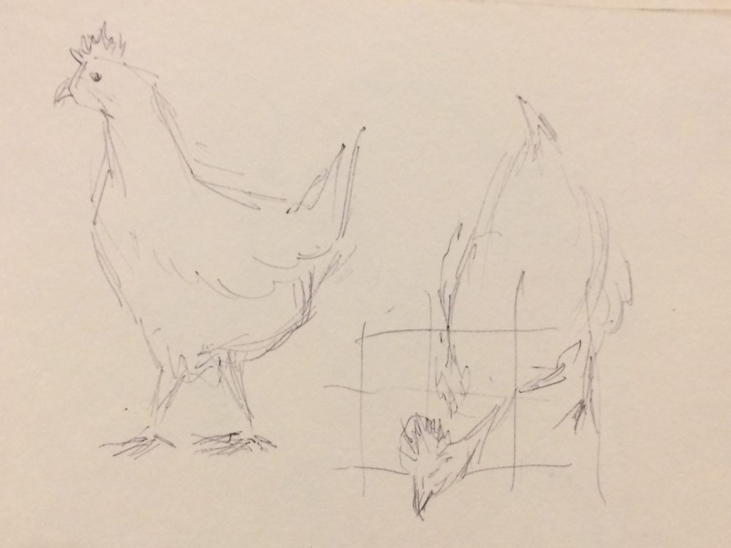 Rough sketches of chickens
