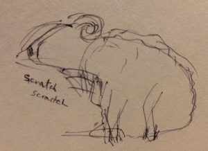 Rough sketch of a sheep scratching it's neck