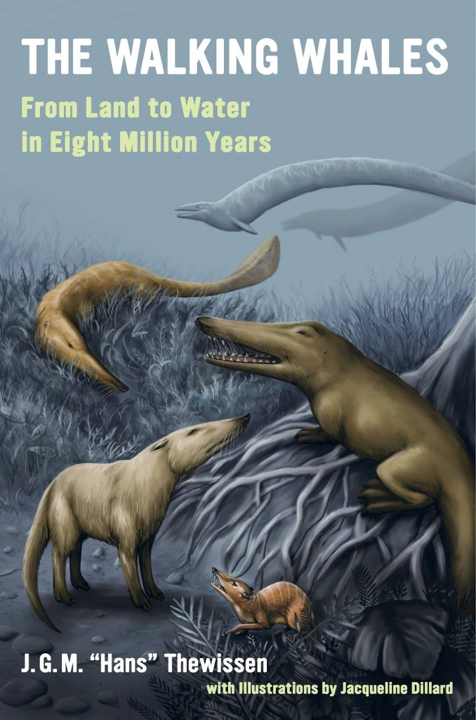 Cover of Prof Hans Thewissen's 2014 Book, The Walking Whales